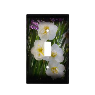 Yellow and White Narcissus Daffodils on Black Switch Plate Covers