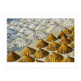 Yellow and White Saa-Paper Umbrellas (Thailand) Postcard