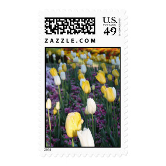 Yellow and White Spring Tulips Postage Stamps
