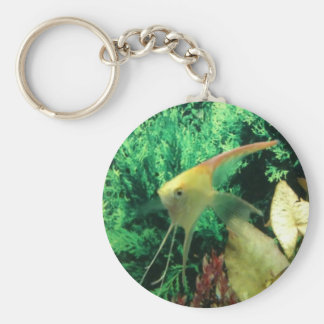yellow angel fish keychain