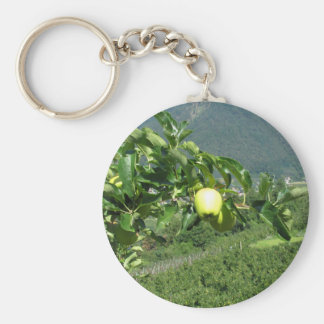 Yellow apples on tree branches keychain