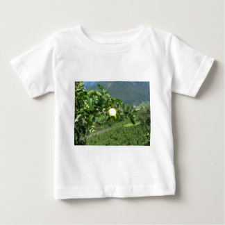 Yellow apples on tree branches shirt