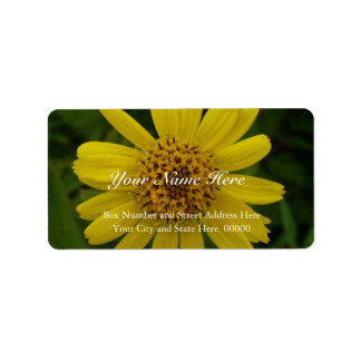 Yellow Arnica Blossom Photo Label