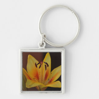 Yellow Asiatic Lily Keychain
