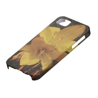 Yellow Asiatic lily on old grunged canvas backgrou iPhone 5 Cases