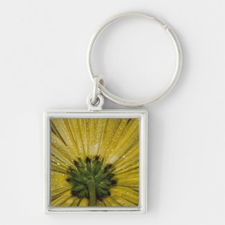 Yellow Aster Flower, Bottom View Key Chain
