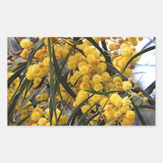 Yellow Australian wattle tree blossoms Rectangular Sticker
