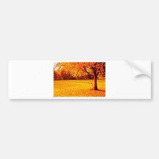 Yellow Autumn Bumper Sticker