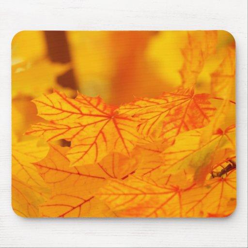 Yellow Autumn Fall Leaves Mousepad