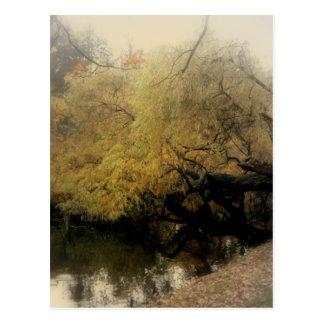 Yellow Autumn Impressions Postcard
