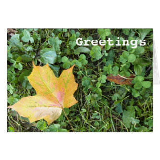 Yellow Autumn Leaf in Clover Card