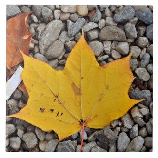 Yellow autumn leaf tile