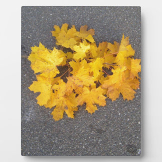 YELLOW AUTUMN LEAVES BRANCH PLAQUE