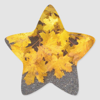 YELLOW AUTUMN LEAVES BRANCH STAR STICKER