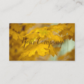 Yellow autumn maple leaves. Add you text or name. Business Card