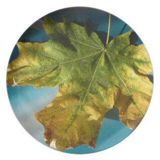 Yellow autumn melamine plate