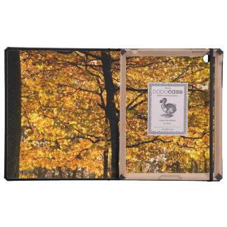 Yellow autumn tree iPad case