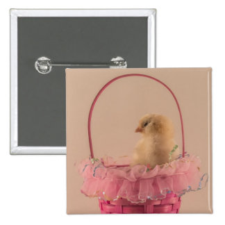 Yellow Baby Chick in Pretty Pink Basket Button