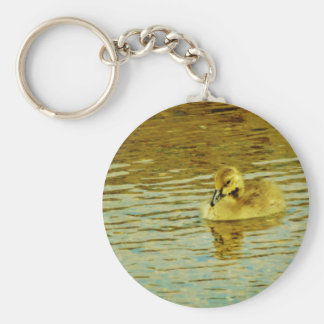Yellow  baby goose in water key chain