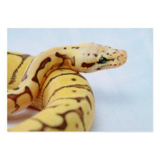 Yellow Ball Python Close Up Business Card Template