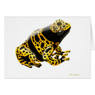 Yellow Banded Poison Dart Frog Card