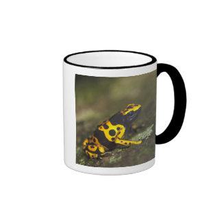 Yellow-banded Poison Dart Frog Dendrobates Coffee Mug