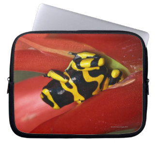 Yellow-banded poison frog computer sleeve