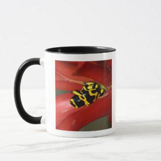 Yellow-banded poison frog mug