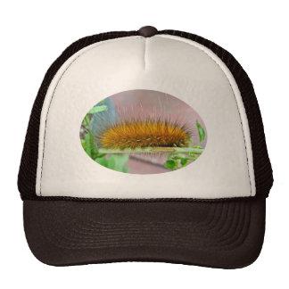 Yellow Bear Caterpillar Virginian Tiger Moth Items Trucker Hat