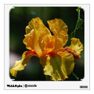 Yellow Bearded Iris Wall Graphic