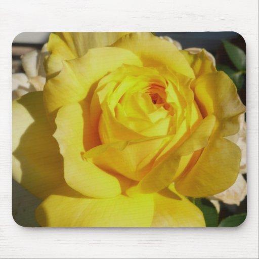 Yellow Beauty Rose Mousepad
