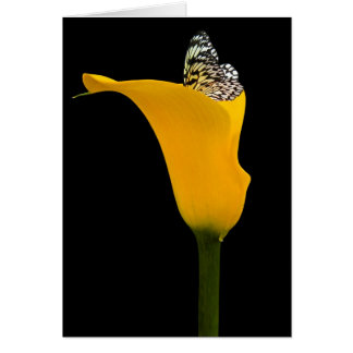 Yellow Beauty Stationery Note Card