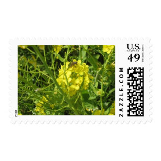 yellow bee stamps
