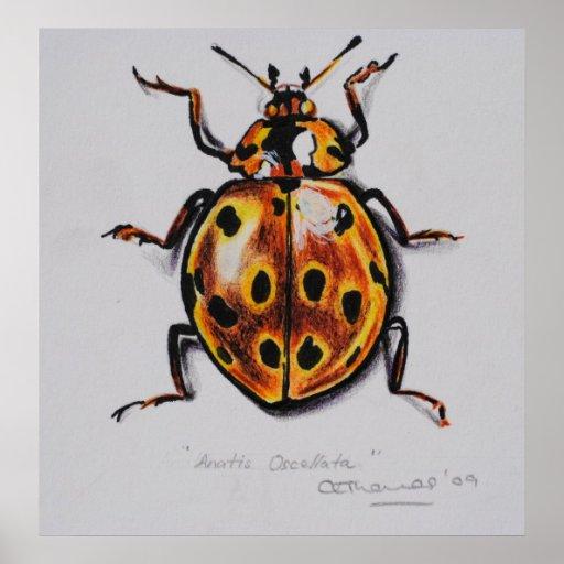 Yellow Beetle Print