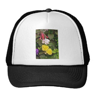 Yellow Begonias And Red, White Flowers flowers Hats