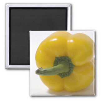 Yellow Bell Pepper 2 Inch Square Magnet