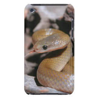 Yellow Bellied House Snake (Lamprophis Fuscus) iPod Touch Covers