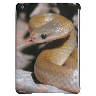 Yellow Bellied House Snake (Lamprophis Fuscus) iPad Air Covers