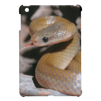 Yellow Bellied House Snake (Lamprophis Fuscus) iPad Mini Case