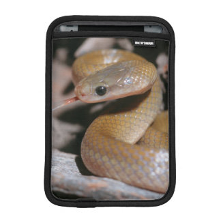 Yellow Bellied House Snake (Lamprophis Fuscus) Sleeve For iPad Mini