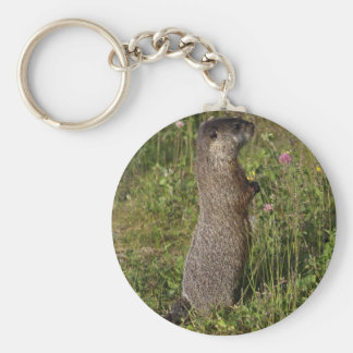 Yellow-Bellied Marmot Gifts Keychain