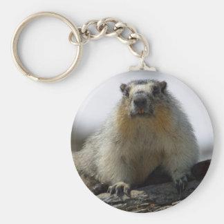 Yellow Bellied Marmot Keychain