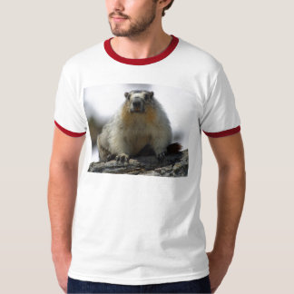 Yellow Bellied Marmot T-Shirt
