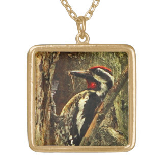 Yellow-bellied Sapsucker Gold Plated Necklace