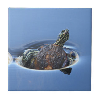 Yellow Bellied Slider Ceramic Tile
