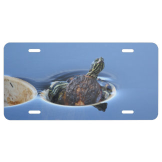 Yellow Bellied Slider License Plate