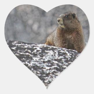 Yellow Belly Marmot Heart Sticker