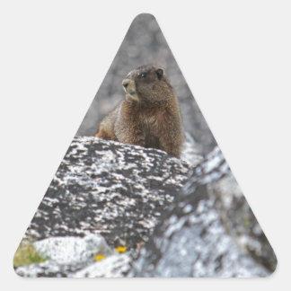 Yellow Belly Marmot Triangle Sticker