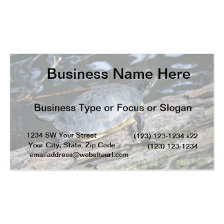 yellow belly slider sunning self on log business card