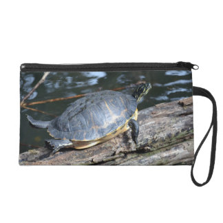 yellow belly slider sunning self on log wristlet purse
